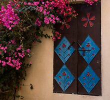 Traditional Metal Door by marycarr