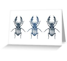 Stag Beetle | Blue Greeting Card