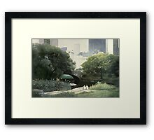 Summer Days(Central Park-New York City) Framed Print