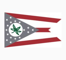 State Flag of Ohio by topkartracer