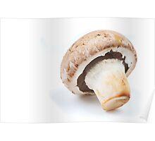 brown champignon Poster