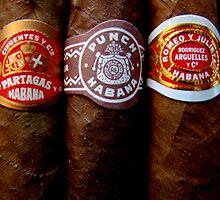 Cuban Cigars by Caroline Fournier