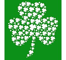 Shamrock Photographic Print