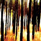 Blurred forest view by Guy Jean Genevier