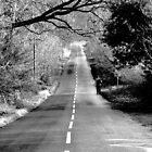Long road home by Abeona