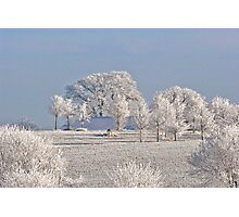 Winter in Canada Photographic Print