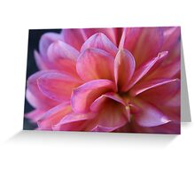 Pink Dahlia Greeting Card