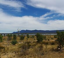 Views of Lake Fyans V02 by Jennifer Craker