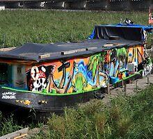 Colorful Houseboat by aidan  moran