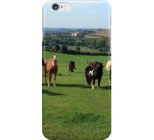 Rare Breeds Of Horses iPhone Case/Skin