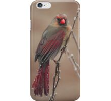 I am NOT ready for my close-up! iPhone Case/Skin