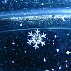 Single Snowflake by Tammy F