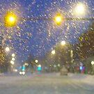 Snowstorm Scene by ChereeCheree