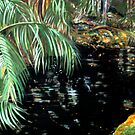 The Jewel Pond by gunnelau