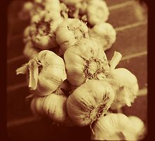 Garlic by Ross Jardine
