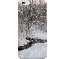 Snowy Brook iPhone Case/Skin