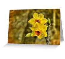 Early Blooms Greeting Card