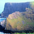 The Cliffs of Moher by Margaret Stevens