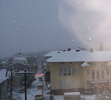 Winter Storm by WaleskaL