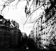 The Windows of Paris  by JulietteClaire