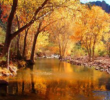 Desert Canyon by Chelsea Brewer