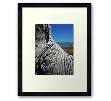View of Bryce Canyon over Tree Trunk Framed Print