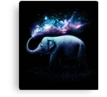 Elephant Splash Canvas Print