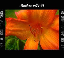Matthew 6:24-34 by Michael Reimann