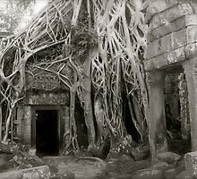 Ta Prohm Inner Temple by Louise Fahy