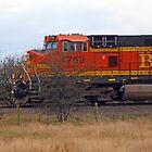 Coal Train by Lesliebc