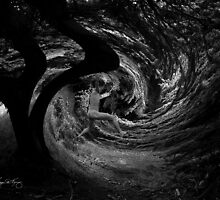 Leaping into the Vortex by Wayne King