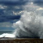 The Wave by deannedaffy