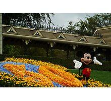 Mickey's Celebration Photographic Print