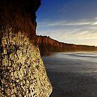 The Rock by deannedaffy