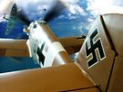 Dogfight - Colour by Colin J Williams Photography