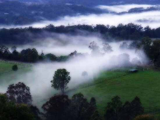 """Mystical Mist"" by debsphotos"