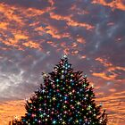 Christmas Sky by Paul Gitto