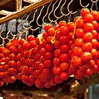 Hanging Tomatoes   by phil decocco