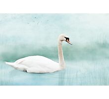 Peace and calm Photographic Print