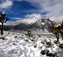 Snow and Clouds, Red Rock Canyon by Benjamin Padgett
