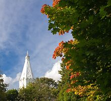 Early Autumn in City Park by cinema4design