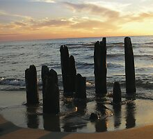 Pilings at Sunset by KateLinden