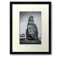 NEW ZEALAND:ELEPHANT ROCK Framed Print