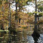 Visons of Lake Arthur # 3 by Golden Richard