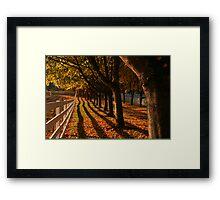 Fall Fence Line Framed Print