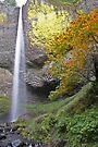 Latourell Falls by Randy Richards