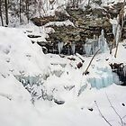 Erie Falls Under Old Man Winter's Spell  by Gene Walls