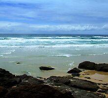 Fraser Coast Wonder I by Cassandra Aldcroft