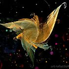 Dancing the dream by Ingrid Funk