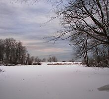 Winter in Durand Eastman Park by madmac57